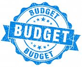 Budget Blue Vintage Isolated Seal