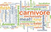 picture of carnivores  - Background concept wordcloud illustration of carnivore - JPG