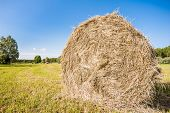 image of hay bale  - Bale of hay drying in the sun - JPG