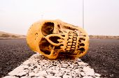 picture of morbid  - Road Death Concept Skull on the Asphalt Street - JPG