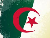 pic of algeria  - The flag of the African country of Algeria - JPG