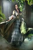 image of old-fashioned  - Young lady in a mysterious forest - JPG