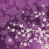 Purple flowering tree background
