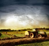 agriculture landscaped with a tractor