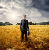 asian business man standing in a wheat field