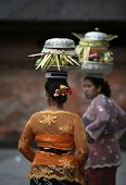 balancing food basket on the head, devotees walk to temple