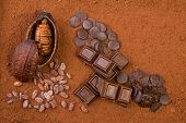image of cocoa beans  - cocoa fruit - JPG