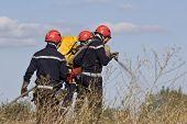 firemen team putting out bush fire