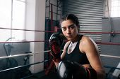 Female Boxer At The Boxing Studio poster