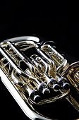 Gold Tuba Euphonium On Black