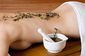 pic of stressless  - herbs on back of woman  - JPG