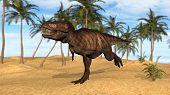 tyrannosaurus in desert