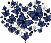 Butterfly Heart Shape