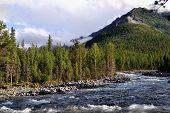 Shumak River Near Shumak Mineral Springs