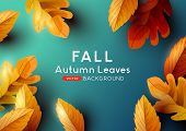 Autumn Season Background Design With Falling Autumn Leaves And Room For Text. Vector Illustration poster