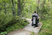 Happy Man On Wheelchair In Nature. Exploring Forest Wilderness On An Accessible Dirt Path. poster