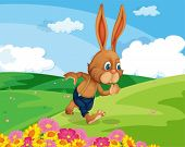 Illustration of a rabbit in a field