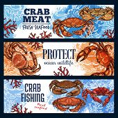 Crab Sea Animal, Seafood And Endangered Species. Vector Marine Shellfish, Ocean Crustacean With Pinc poster