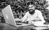 Bearded Man Freelance Worker. Remote Job. Freelance Professional Occupation. Hipster Busy With Freel poster