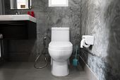 White Hanging Toilet Seat On White Toilet In The Home Bathroom With Grey Tiles In Concrete Style And poster