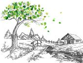 Green leaves tree in spring, rural landscape, bridge over small river and lodge
