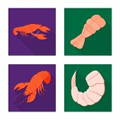Vector Design Of Appetizer And Seafood Icon. Collection Of Appetizer And Ocean Stock Symbol For Web. poster