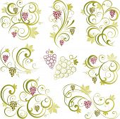 stock photo of grape-vine  - Grapevine swirling motifs - JPG