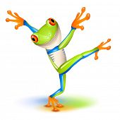stock photo of orange frog  - Dancing Tree Frog in equilibrium - JPG