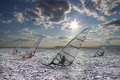 Silhouette of a windsurfers on the blue sea