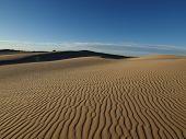 Mojave Dune