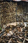 Stack of chopped firewood with wood shed