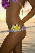 A Beautiful Polynesian Girl In  Bikini On A Hawaii Beach