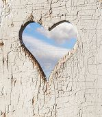 image of outhouse  - Heart shape look out on wooden door to outhouse - JPG