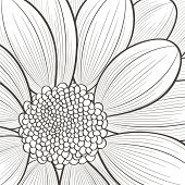 Hand-drawn floral  background. Vector flower chrysanthemum. Element for design.
