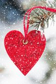 heart at snow on fir tree