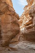 Mountain Oasis Tamerza In Tunisia