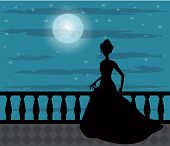 picture of night gown  - silhouette of a woman in a long dress against a background of the moon and the night sky - JPG
