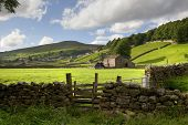 image of swales  - View towards the remote village of Gunnerside - JPG