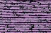 Pink Tiled Roof For Background Usage