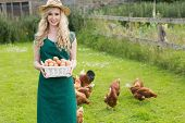 image of bird fence  - Young woman presenting a basket filled with eggs with chickens behind her - JPG