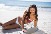 Smiling sexy young woman in bikini using her laptop on the beach