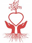 image of fragile sign  - the symbol of hand holding red heart tree - JPG