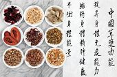 Traditional chinese herbal medicine with mandarin script calligraphy on rice paper over marble. Translation describes the functions to increase the bodys ability to maintain health and balance energy.
