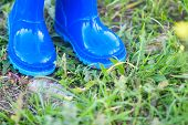 Dark Blue Wellington Boots