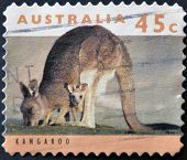 Australia - Circa 1994: Stamp Printed By Australia, Shows Kangaroo, Circa 1994