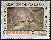 A stamp printed in Ecuador dedicated to Provincialization of the Galapagos shows a tortoise