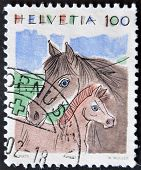 Switzerland-circa 1993: A Stamp Printed In Switzerland, Shows A Horse And Foal, Circa 1993