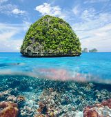 Beautiful uninhabited island in Thailand with coral reef bottom underwater and above water split vie