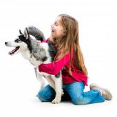 little girl is with her dog husky isolated on white background