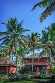 Cottages in a palm grove. Varkala, Kerala, India.